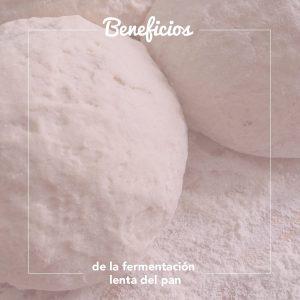 fermentación lenta